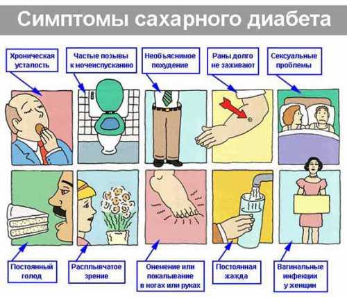 водянка у собаки: симптомы и лечение, что делать в домашних условиях, причины патологии
